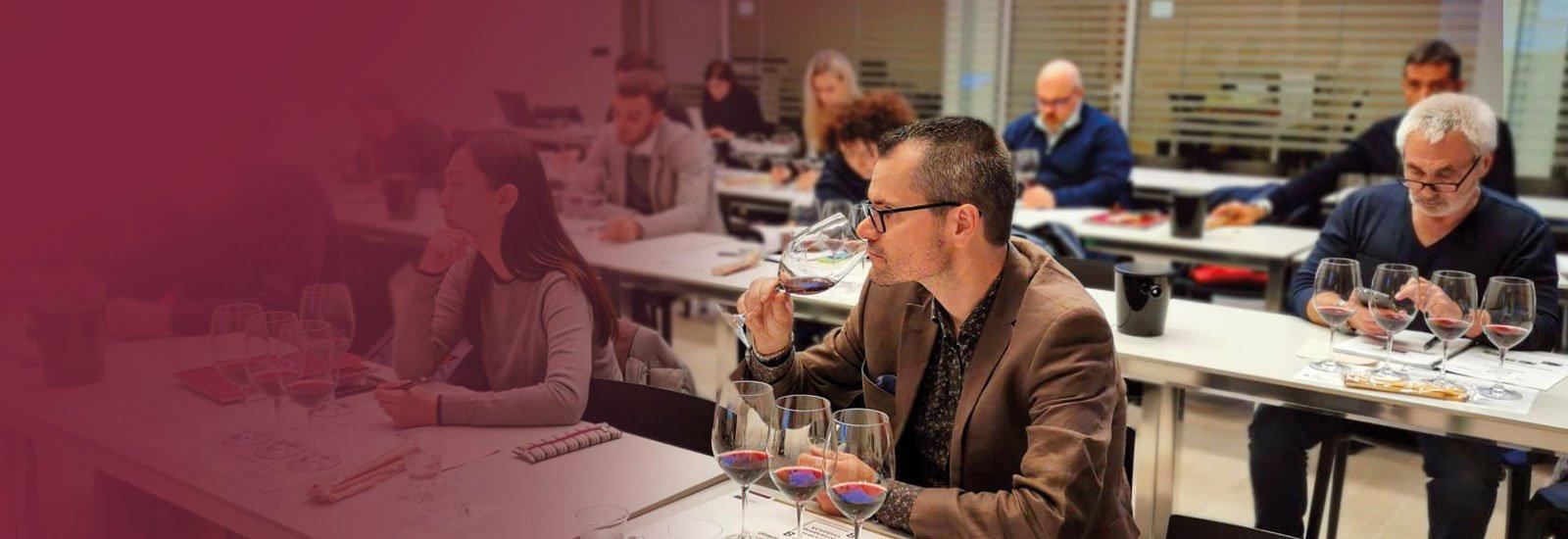 Corso Langhe Wine Ambassador - Barolo & Barbaresco Academy